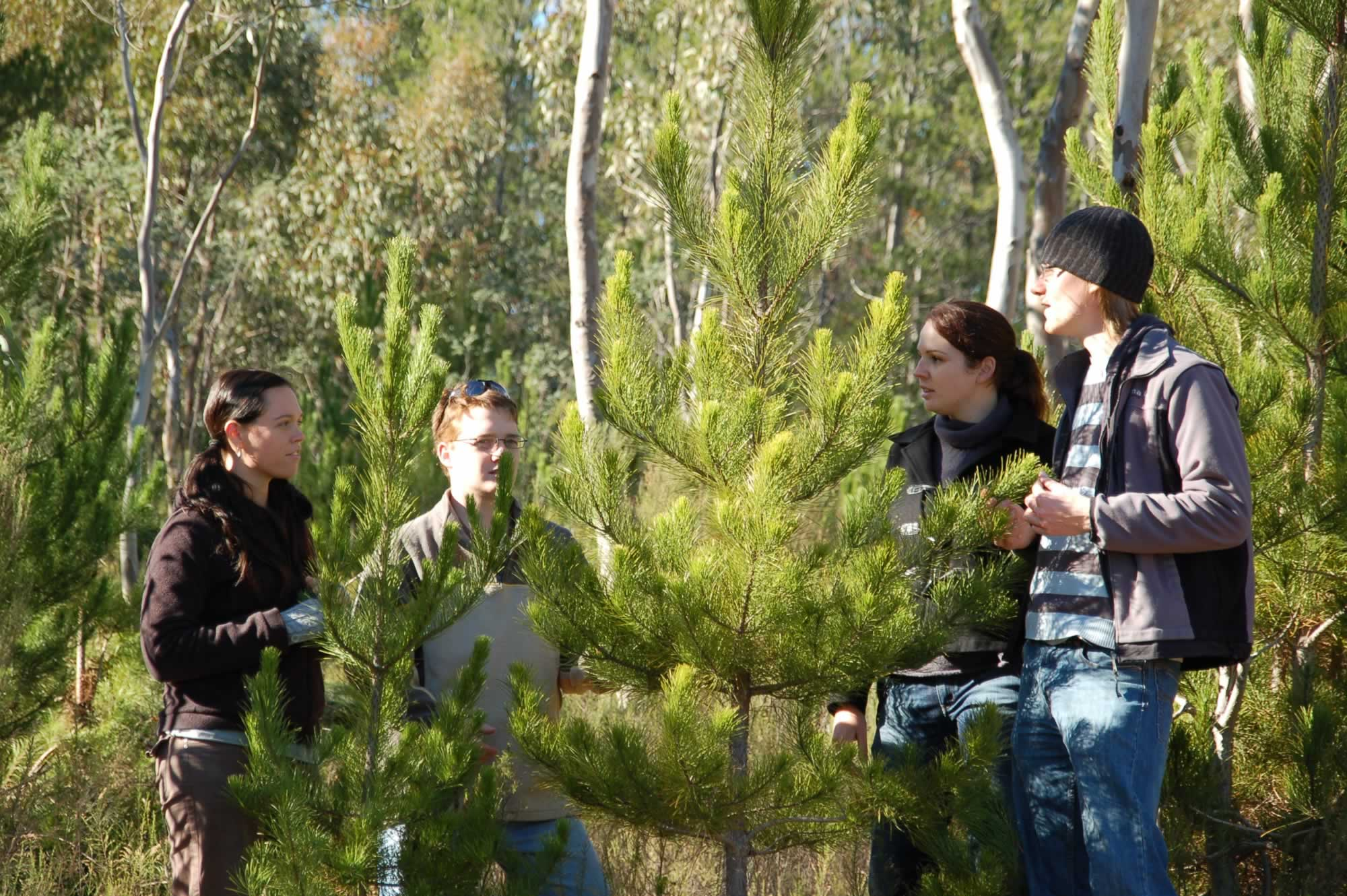students in the forest
