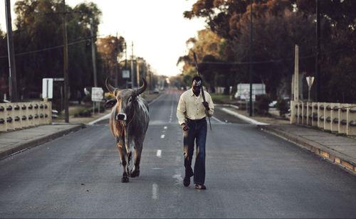 Still from Grey Bull (2014) directed by Eddy Bell.